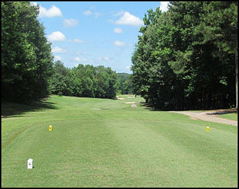 Polo Golf Country Club Golf Homes for Sale Cumming GA